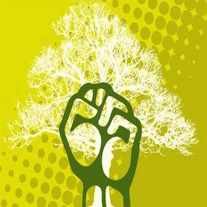 Por una coherente Ecología Política